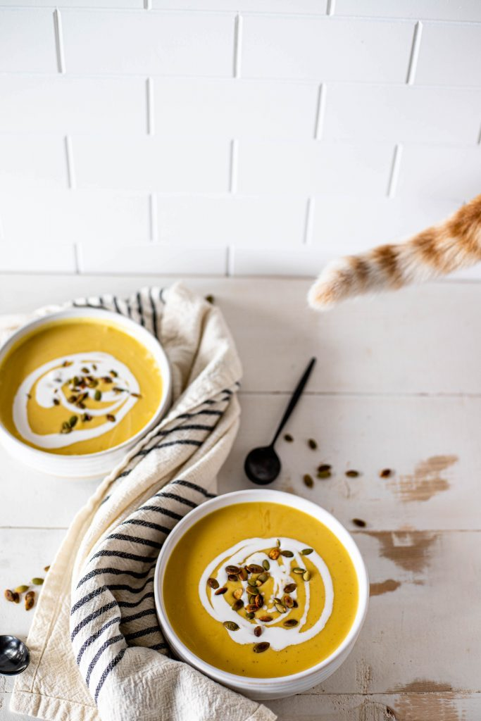 cat tail and soup